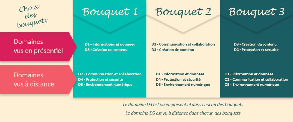 Infographie expliquant le choix des bouquets : 3 types de cours en fonction des domaines du référentiel PIX
